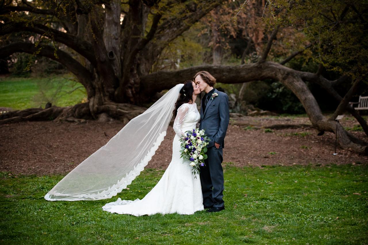morris-arboretum-wedding-46